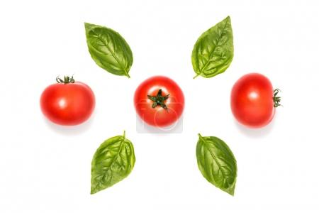 Composition of tomatoes with basil leaves