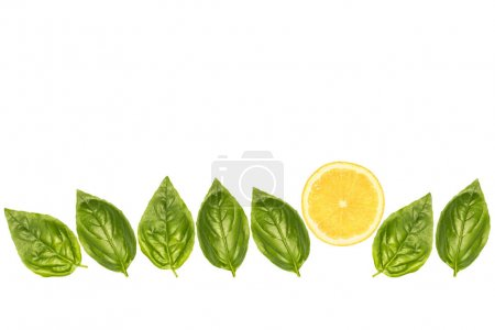 Photo for Composition of basil leaves and lemon slice isolated on white - Royalty Free Image