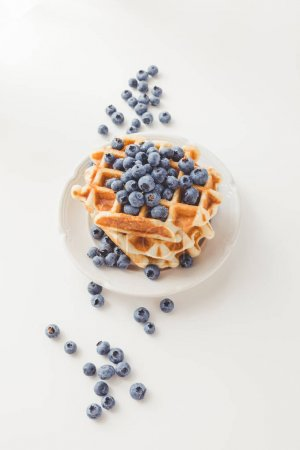 Photo for Plate of delicious  waffles with blueberries - Royalty Free Image