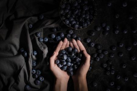 Fresh blueberries in hands
