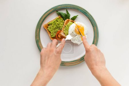 Photo for Cropped view of person eating fried egg and mashed avocado on toasts for breakfast, isolated on white - Royalty Free Image