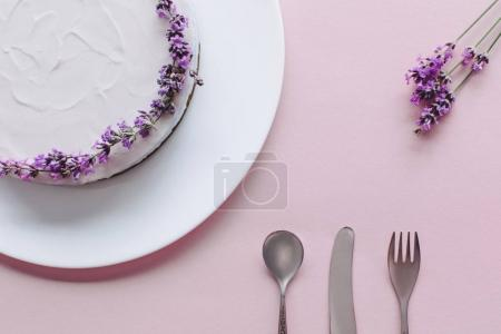 Photo for Top view of beautiful cheesecake decorated with lavander - Royalty Free Image