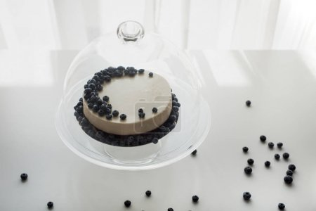 cheesecake with blueberries on glass stand