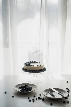 Photo for Delicious cheesecake with blueberries on glass stand with dome - Royalty Free Image