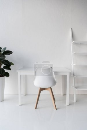 Photo pour Élégant blanc vide lieu de travail avec plante d'intérieur et étagères - image libre de droit