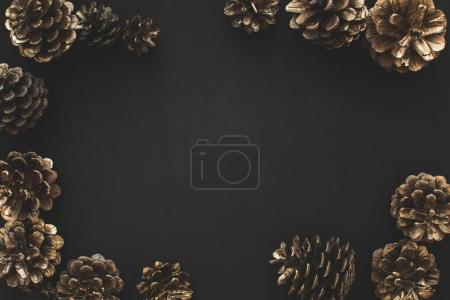 Photo for Frame of pine cones isolated on black - Royalty Free Image