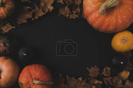 Pumpkins and dried leaves