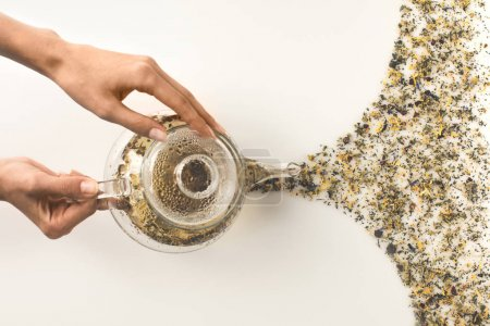 person pouring herbal tea