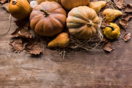 Autumn harvest and leaves