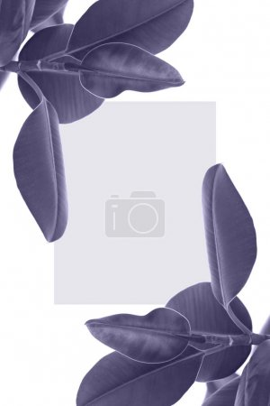 leaves with blank card