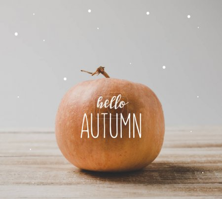 Photo for Close up view of raw pumpkin on wooden surface isolated on grey - Royalty Free Image