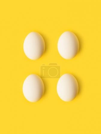 Four chicken eggs
