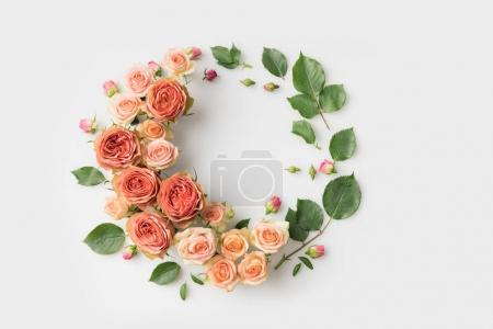 Photo for Pink flower wreath with leaves, buds and petals isolated on white - Royalty Free Image