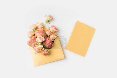 Photo pour Belles roses roses en enveloppe isolé sur blanc - image libre de droit
