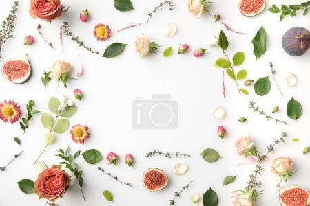 Photo for Floral concept with flowers, leaves, petals, buds and figs isolated on white - Royalty Free Image