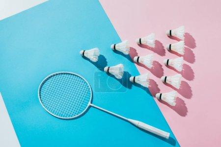 Photo pour Vue de dessus de la composition avec raquette de badminton et navettes sur papier bleu et rose - image libre de droit