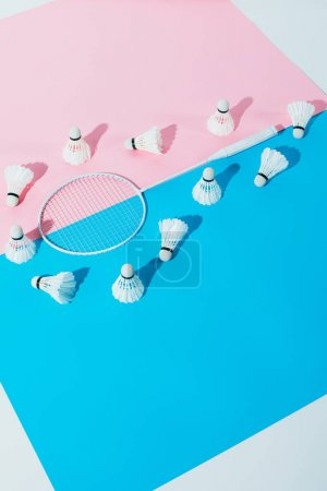 shuttlecocks around badminton racket on blue and pink papers