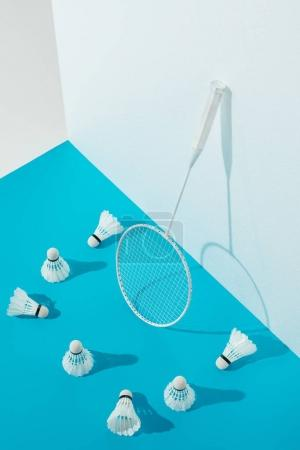 Photo for Badminton racket and shuttlecocks on blue paper at white wall - Royalty Free Image