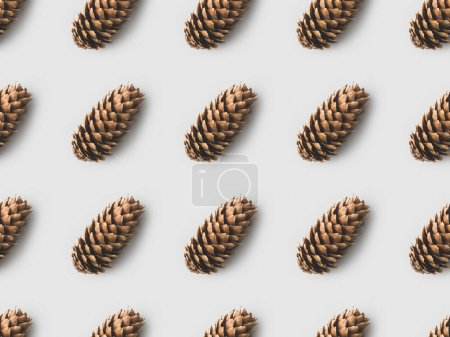 pattern of pine cones on white surface