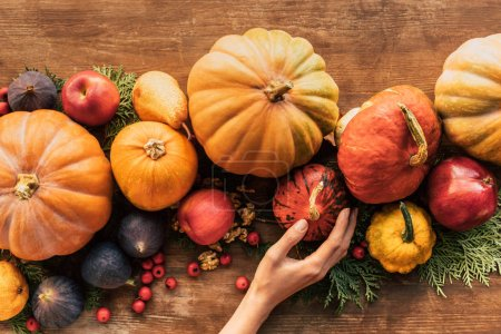 cropped shot of woman touching pumpkins on wooden table