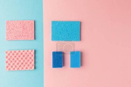 top view of blue and pink washing sponges, on pink and blue