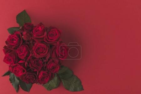 Photo pour Vue du haut du bouquet de roses rouges aux feuilles vertes isolées sur rouge - image libre de droit