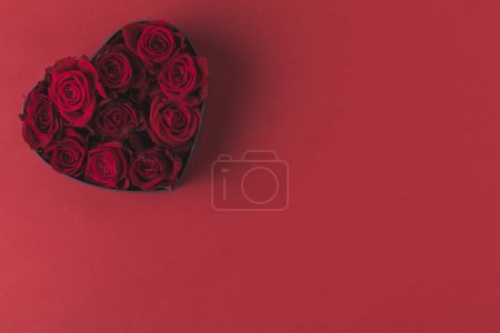 top view of roses in heart shaped gift box isolated on red, st valentines day holiday concept