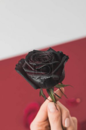 selective focus of woman holding colored in black in hand