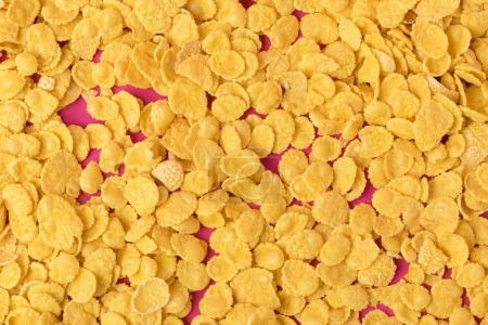 top view of delicious tasty crispy corn flakes on pink