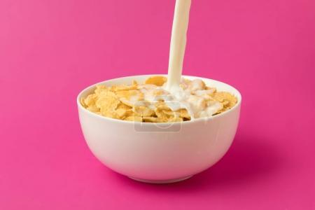 Photo for Close-up view of fresh milk pouring into bowl with corn flakes isolated on pink - Royalty Free Image