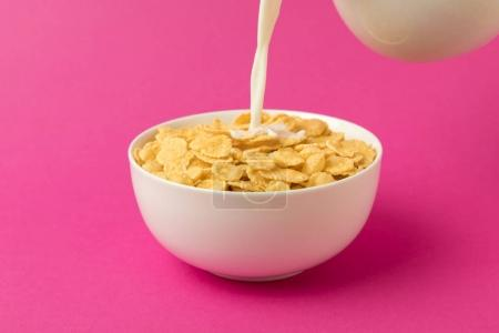close-up view of milk pouring into bowl with corn flakes isolated on pink