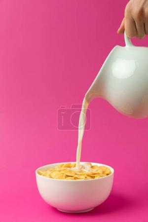 partial view of person pouring fresh healthy milk from jug into bowl with corn flakes isolated on pink