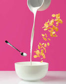 pouring fresh healthy milk from jug to bowl, spoon and corn flakes on pink