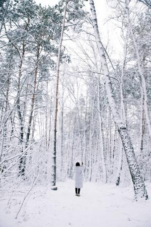 rear view of woman taking photo of snowy forest by smartphone