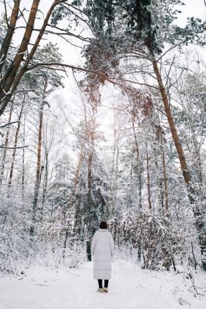 Photo pour Vue arrière de la fille marchant dans la forêt enneigée - image libre de droit