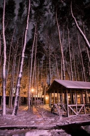 wooden cottage in snowy forest in evening