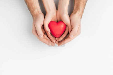 top view of hands of elder person and smaller one holding red heart isolated on white background