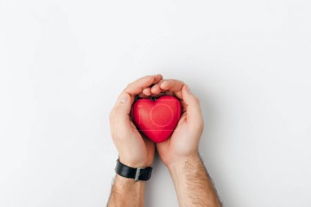 top view of hands with wristwatch holding red heart isolated on white background