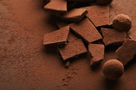 close up view of truffles and chocolate bars in cocoa powder