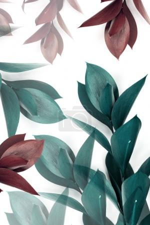 turquoise and brown leaves on twigs isolated on white