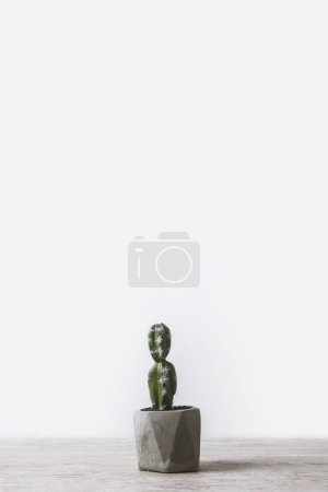 Photo for One potted cactus on marble table on white - Royalty Free Image