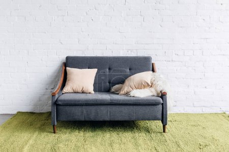 Photo for Comfy couch in modern living room with white brick wall, mockup concept - Royalty Free Image