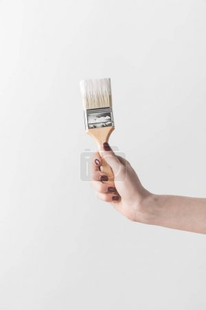 cropped image of woman holding brush in white paint isolated on white