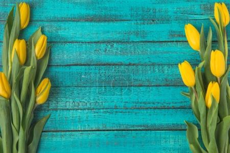 Photo for Top view of beautiful blooming yellow tulips on turquoise wooden surface - Royalty Free Image