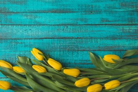 Photo for Top view of beautiful yellow tulip flowers on turquoise wooden surface - Royalty Free Image