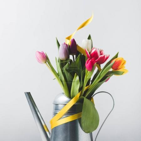 Photo pour Vue rapprochée de belles tulipes colorées en arrosoir avec ruban jaune sur gris - image libre de droit