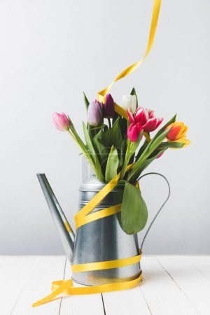 beautiful blooming tulip flowers in watering can with yellow ribbon on grey