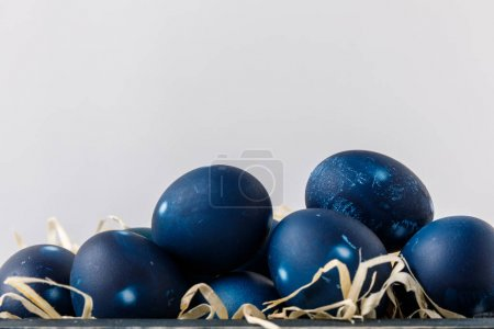 blue painted easter eggs on decorative hay isolated on white