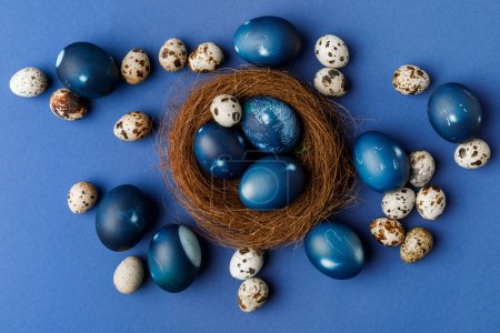 top view of blue painted easter eggs and quail eggs in decorative nest on blue surface