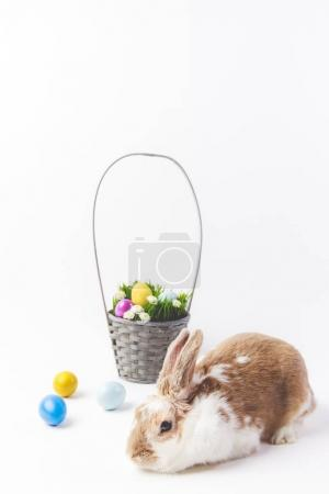 Easter basket with painted eggs and rabbit, easter concept
